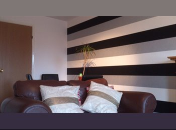 Room In 2 Bedroom Fully Furnished flat to let