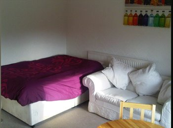 Room in Victorian House nr to Staffs Uni/Hanley