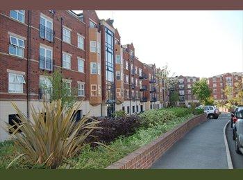 Nice Flat Far Headingley Carrisbrook Road £375PCM