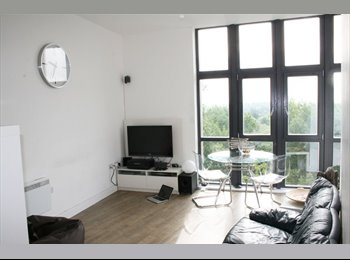 Luxury flat share with canal views!
