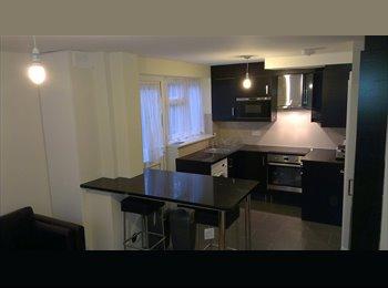 EasyRoommate UK - Completely refurbished house near Hatfield Station - Hatfield, Hatfield - £440 pcm
