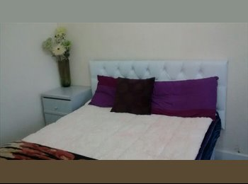 Double Room For Pofessionals