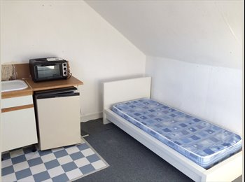Dover: Large Room in Clean and Cosy House