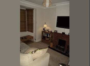 Large single room in friendly House