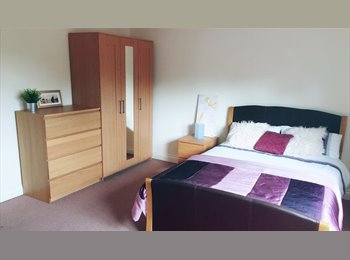 EasyRoommate UK - Superior Non-Smoking Double Room (Furnished), Exeter - £495 pcm