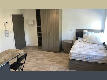 3 bed student house