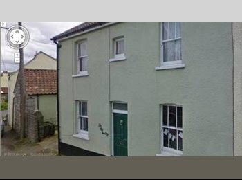 EasyRoommate UK - Lovely Large Shared Vet House Congresbury Langford - Congresbury, Bristol - £275 pcm