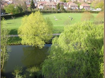 EasyRoommate UK - ROOM WITH A VIEW! - Colchester, Colchester - £450 pcm
