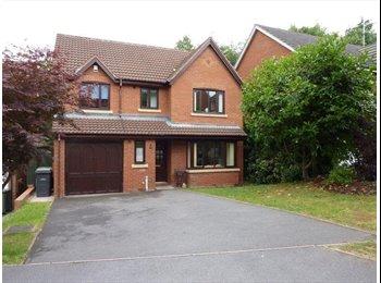 EasyRoommate UK - House details - Holt End, Redditch - £350 pcm