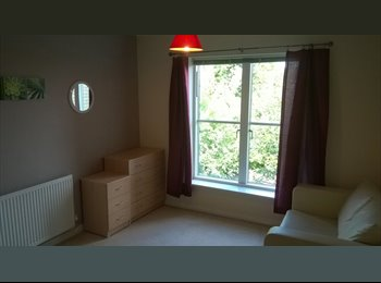 EasyRoommate UK - Extra Large Double Bedroom, Cheltenham - £385 pcm