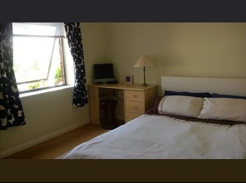 Double room in Notting Hill area