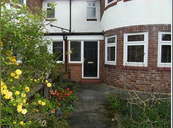 EasyRoommate UK - Professional Houseshare in Fenham - Fenham, Newcastle upon Tyne - £500 pcm