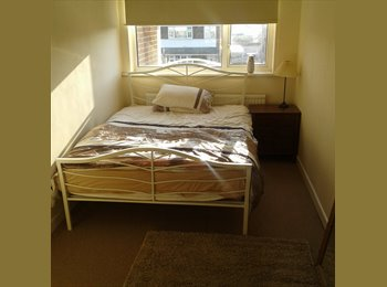 EasyRoommate UK - Dbl Room to Rent, Peterborough - £350 pcm