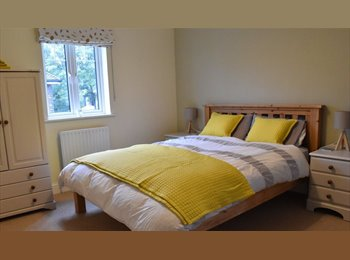 Large double room, ensuite, new media/cinema room