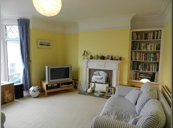EasyRoommate UK - Owner Occupier House Share-Mumbles, Swansea - The Mumbles, Swansea - £360 pcm