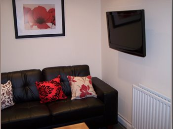 EasyRoommate UK - Stylish room to rent in Chelmsford Essex - Chelmsford, Chelmsford - £480 pcm