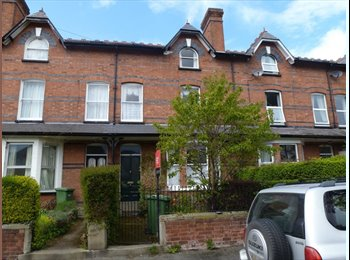 EasyRoommate UK - Rooms to Rent - Hereford, Hereford - £368 pcm