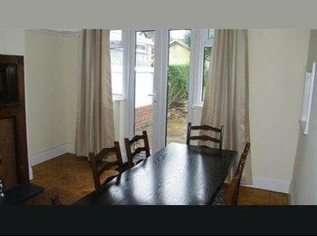 EasyRoommate UK - Double room in Swansea for student/profess. - Sketty, Swansea - £440 pcm