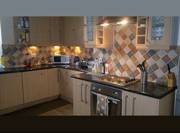 Good Size DOUBLE room in large 4 bedroom house
