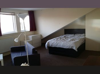 house shares / ensuites / studios / 2 bed flat
