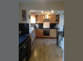 Double room available in friendly house