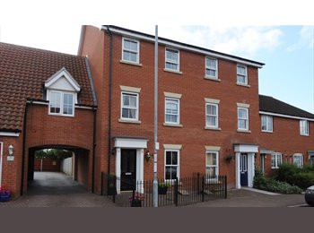 EasyRoommate UK - Large Double Room with En-suite - Mile End, Colchester - £475 pcm