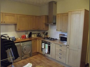 EasyRoommate UK - Flat with a Cat (DUNDEE WEST END) - Dundee, Dundee - £350 pcm