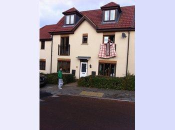 EasyRoommate UK - Double room for rent, Milton Keynes - £480 pcm