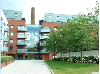 EasyRoommate UK - Well furnished flat to share in central London, Finsbury Park - £650 pcm