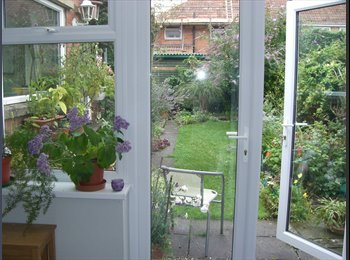 EasyRoommate UK - room to let in spacious shared house - Bridgwater, Sedgemoor - £390 pcm