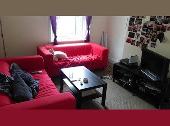 EasyRoommate UK - LUXURY FLAT  OPPOSITE NORTHUMBRIA UNIVERSITY - Newcastle City Centre, Newcastle upon Tyne - £400 pcm