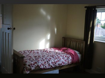 EasyRoommate UK - Room to let in lovely detached house in Glenfield - Glenfield, Leicester - £325 pcm