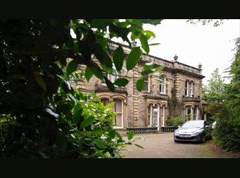 EasyRoommate UK - double en suite, Edinburgh - £500 pcm