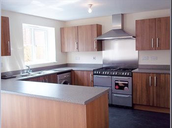 Double Room within Modern Stylish Home - All Bills Included