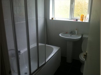 EasyRoommate UK - 4 Bedroomed house - Wilnecote, Tamworth - £250 pcm