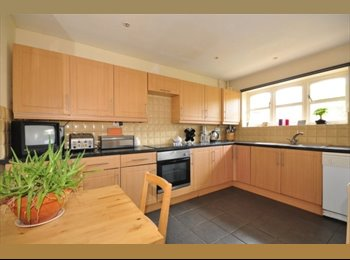 EasyRoommate UK - Room To Let - Chichester, Chichester - £440 pcm