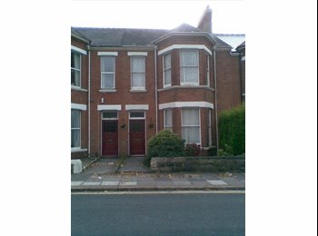 EasyRoommate UK - 1 room in terraced house for rent - Mutley, Plymouth - £300 pcm