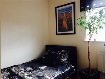 EasyRoommate UK - single room 4 a single person - Edgbaston, Birmingham - £425 pcm