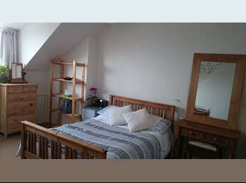 EasyRoommate UK - Spacious attic double bedroom - Crookes, Sheffield - £400 pcm