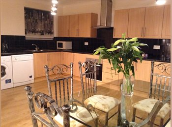 EasyRoommate UK - Stunning Double Room in SLOUGH - off Bath Rd - Slough, Slough - £535 pcm
