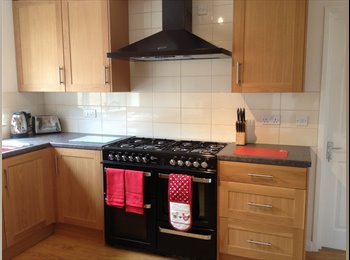 EasyRoommate UK - Looking for somewhere a bit special? - Taunton, South Somerset - £450 pcm