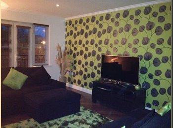 EasyRoommate UK - Luxury Modern Townhouse, Darlington - £475 pcm