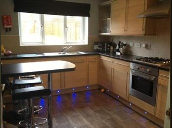 1 Double &2 Single Rooms in a quiet detached house