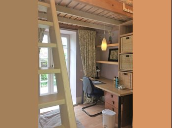 EasyRoommate UK - sunny cosy double room overlooking garden, Dundee - £345 pcm