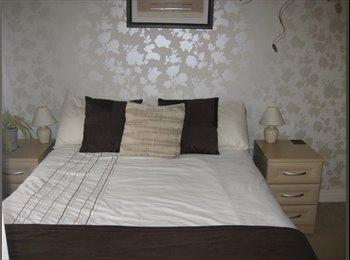 EasyRoommate UK - Lovely Double Rooms - Bury St Edmunds, Bury St. Edmunds - £400 pcm