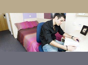 en-suite room available NOW until Sept