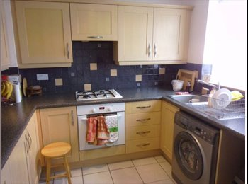 Clean,comfortable room in North Finchley to let.