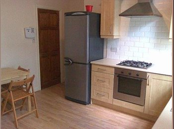 EasyRoommate UK - Nice Clean house with garden and friendly people., Leeds - £320 pcm