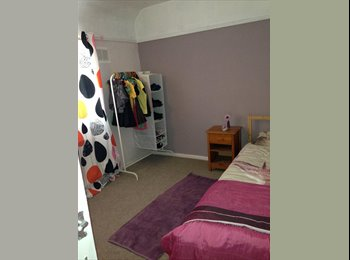 EasyRoommate UK - Spacious clean fresh room would suit  professional - Glenfield, Leicester - £300 pcm