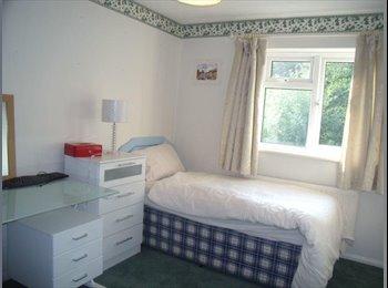EasyRoommate UK - CLEAN & COMFORTABLE room available. - Tunbridge Wells, Tunbridge Wells - £395 pcm